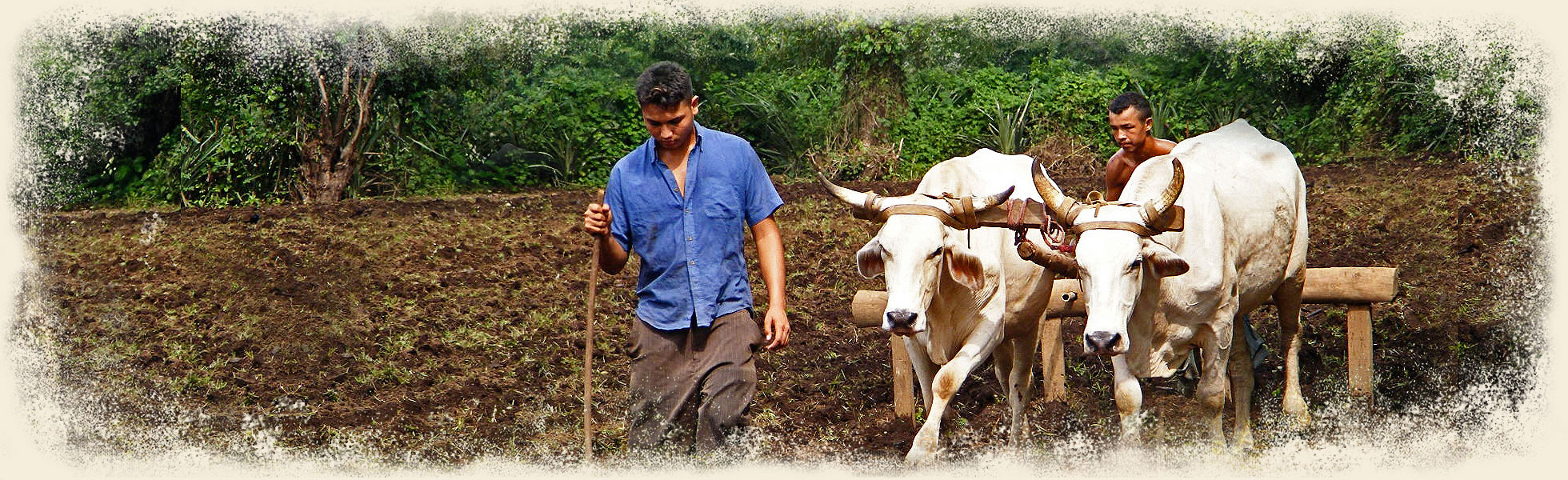 Real Fair Trade Organic Cotton Clothing